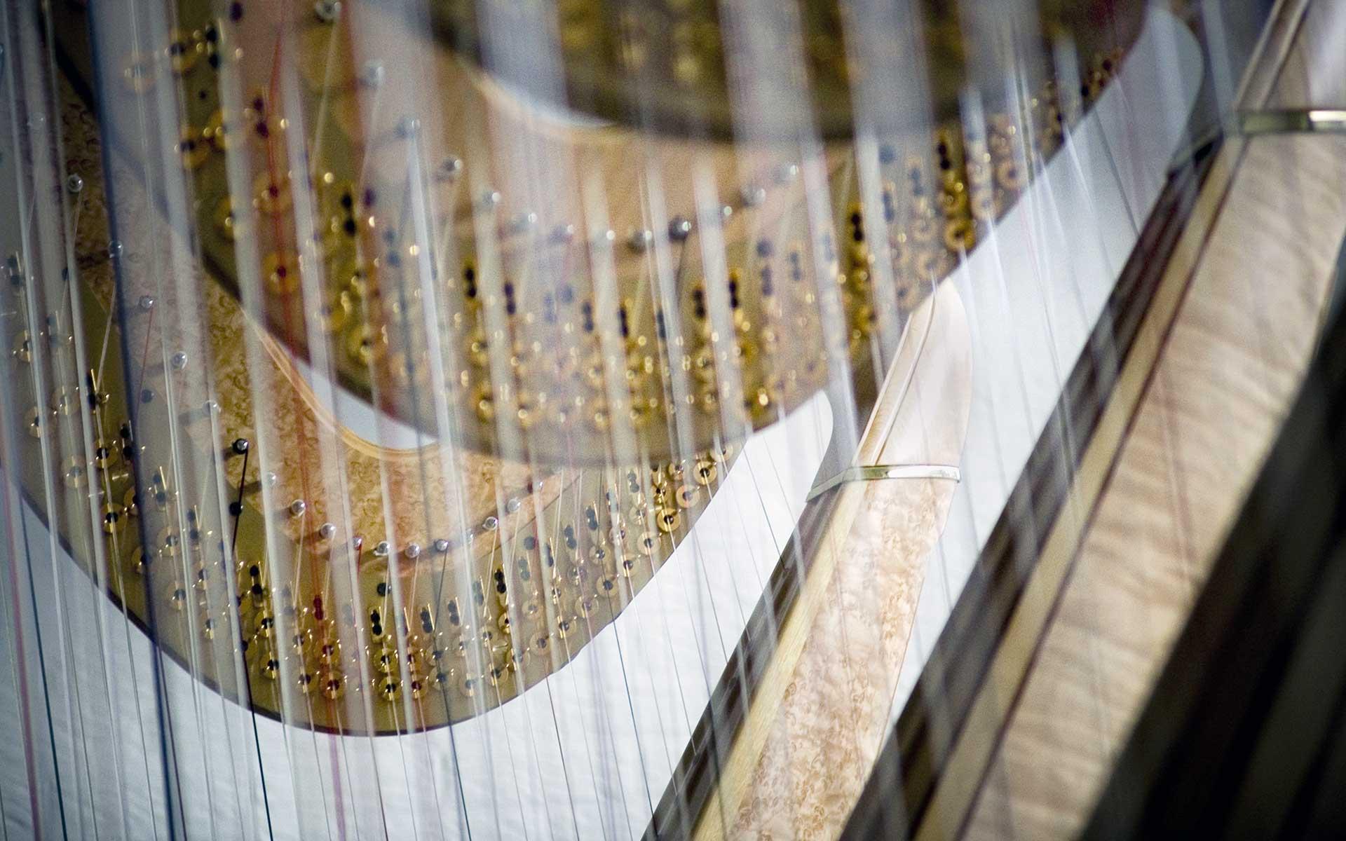 Viegas Harp 1